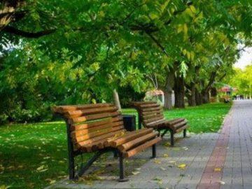 В Новой Москве планируют создать более 80 парков
