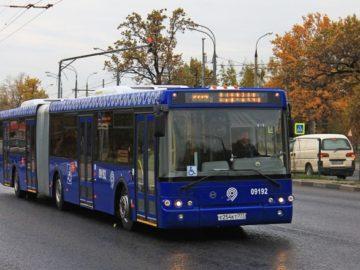 Автобус в Новой Москве