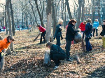 Сосны и березы высадят во время субботника в Новой Москве