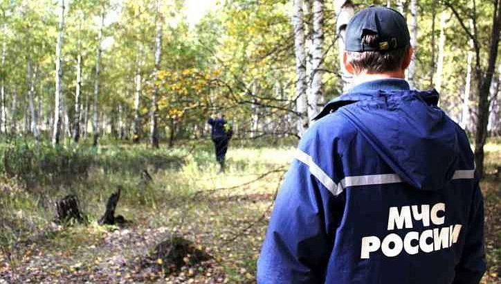 МЧС. Потерявшегося в лесу возле пос. Кокошкино в ТиНАО ребенка нашли
