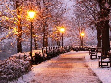 В парке отдыха «Пыхтино» установили 150 фонарей