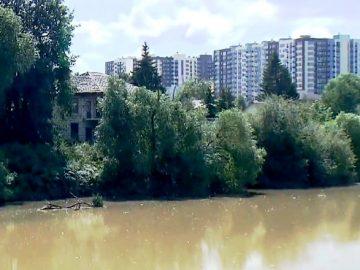 Департамент природопользования начал проверку по факту загрязнения Николо-Хованского пруда в ТиНАО